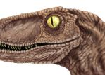 Clever girl. by sweethitch-hiker
