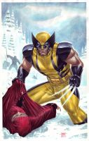 Wolverine vs. Ninjas by edtadeo