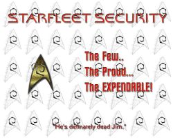 Starfleet Security by walkingstranger