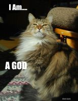 Cat God LOLCat by Raph1966