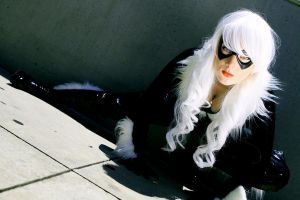 Black Cat - Stretch by Lady-Kathryn
