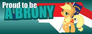 NCB Facebook Cover Photos - Brony, Applejack by elvisshow