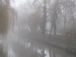 Misty Canal by webworm