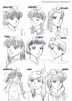 Hairstyle memes by inq-princess