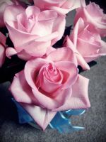 Lovely Bouquet by evelynrosalia