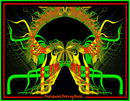 Paranoid Perceptions by hippychick-nm