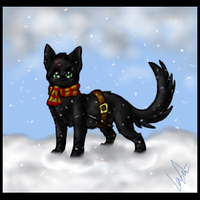 Harry Potter kitty :D by Iceity
