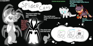 SpiderCats [Reference Sheet] CLOSED SPECIES by amiirou