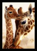 Lovely Mama and Baby by sej