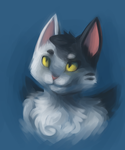 CU: A Portrait of the Aubrey as a Young Cat by AceWu