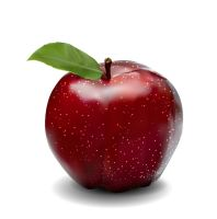 Apple vector by anone52