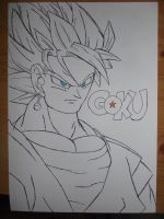 Goku number Two! by ShawnJames94