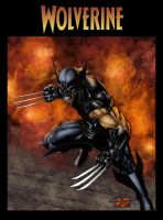 Wolverine... again... by Jake-Townsend