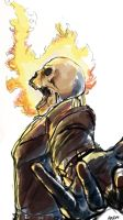 Ghost Rider by Decision-To-Protect