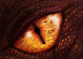 The Eye of Smaug by xybibi