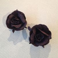 roses by Toash