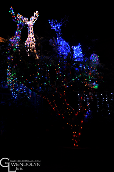 Christmas Lights 28 by GwendolynLee