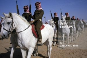 Saudi Arabia White Guard by saudi6666