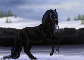 Dark Horse by Baskia