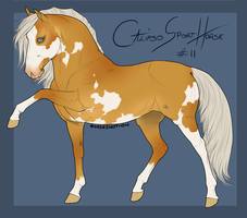 Calipso Import Horse #11 by BH-Stables