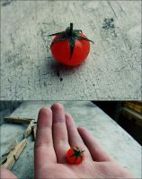 Tomato by mad3