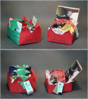 Christmas gift box - cats and tree by sjupiter-belcha