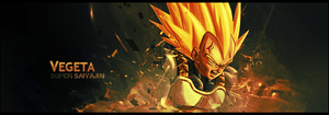 Vegeta Tag by Ruminia