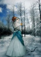 Winter dream by Flore-stock