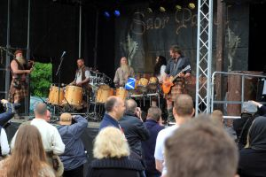 Keltfest 2015 25 by pagan-live-style