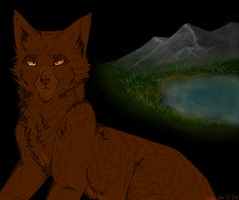 Brambleclaw~ The New Prophecy by Shadowstar-12