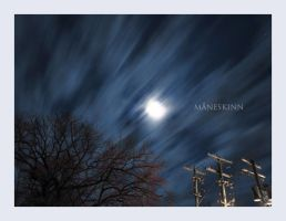 maneskinn by theblueberrybush
