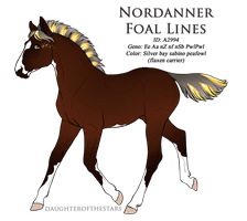 A2994 - Nordanner Foal Design by Ikiuni