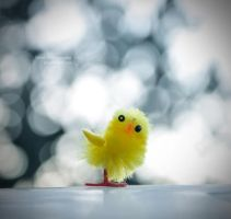 Cheep.. . by Fwirll
