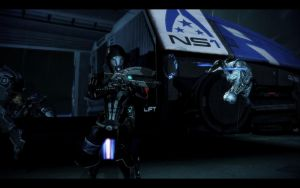 ME3 LDLC - Tali vs Reapers 2 by chicksaw2002