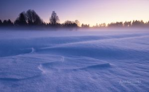 Winter Fog by JoniNiemela