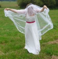 bride on a field - veil + wind 6 by indeed-stock