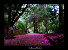 Sacred Path by Inebriantia