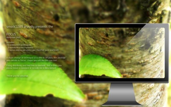 SOLiD FOCUS - wallpaper pack by smack1289