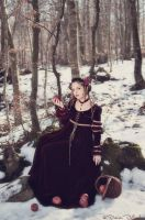Snow White 5 by Costurero-Real