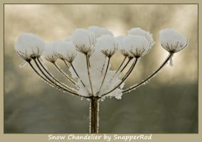 Snow Chandelier by SnapperRod