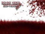 Sound Video SoftWare 2006 by SoundVideoSoftWare