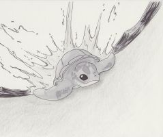 Baby Sea Turtle by ForeverNerd