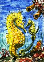 Seahorses by frizz-art