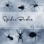 Spider Brushes by Henda-Stock