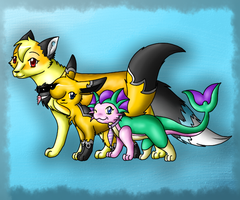 Of foxes and Cats :gift art: by CrispyCh0colate