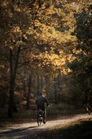 What about a ride to the autumn sun? by Einsilbig