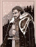 Game of Thrones Eddard Stark by jdurden44