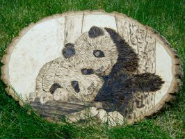 Sleepy Panda Bears - Wood Burning by brandojones