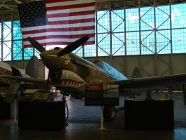Curtiss P-40 by Jetster1