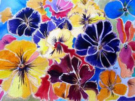 PANSIES AND LIGHT by GeaAusten